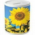 sublimation money box