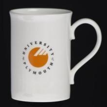 Windsor bone china mug