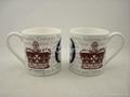 Ash  fine bone china mug ,10oz