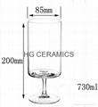 Sublimation Big Juice Glass