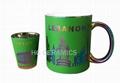 Colorful Metallic Mug