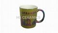 Metallic Mug, Colorful Metallic Mug with