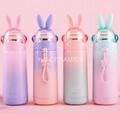 Sublimation Colour rabbit bottle