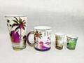 HAWAII glass mug