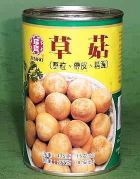 清水草菇 1