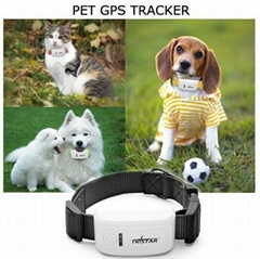 Waterproof Ipx-6 Tracking Device for Pet