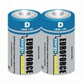 Alkaline Battery D size LR20