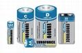 Alkaline Battery D size LR20