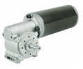 Special dc motor for automatic door and