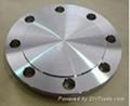Forged Steel Flange,plate flange