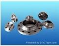 socket welding flange 2
