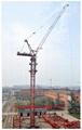 Luffing tower crane SCM-D90