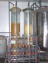 大孔弱碱性阴离子树脂D301 2