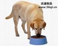 Dog food imports, imported dog food, dog food imports in Hong Kong  1