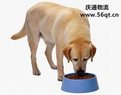 Dog food imports, imported dog food, dog food imports in Hong Kong