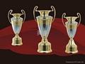 水晶獎牌 1