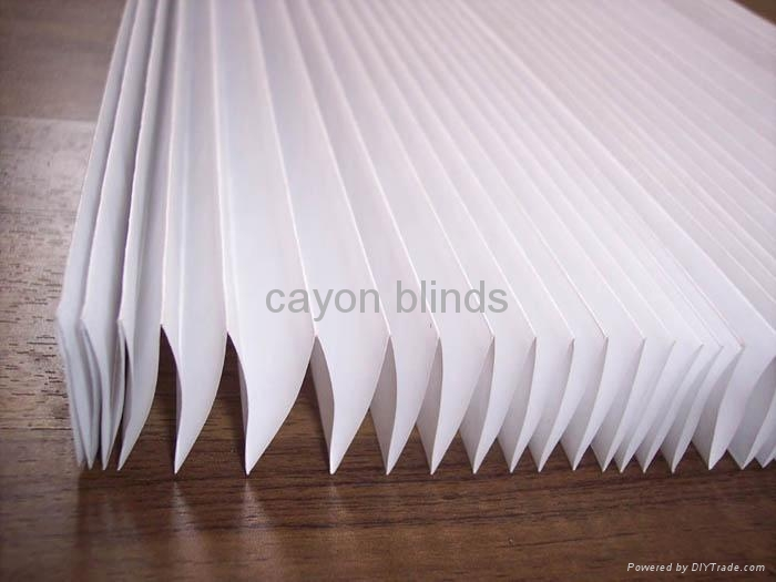 Paper Shade Light Filtering White Pleated Blind Pb01