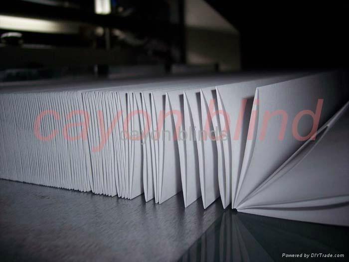 blinds 3