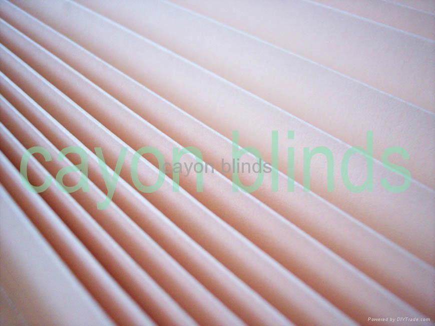 Blackout paper blinds supplier 2