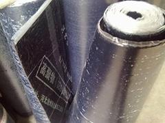 SBS改性瀝青防水卷材
