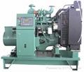 Feihong diesel generator set
