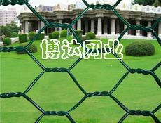 武汉石笼网六角网 1