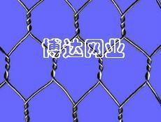 武汉石笼网六角网 4
