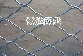 武汉美格网 5
