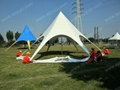 Single top star shade made of PVC Fabric and aluminum poles  4