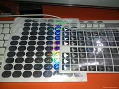 Mini Visa  hologram stickers