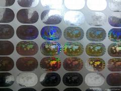 Silver Master hologram Globe