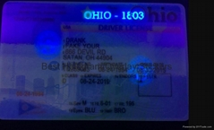 PA  state ID overlay with UV light