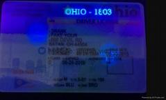 NJ  state ID overlay with UV light