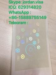 Italian Passport Hologram Overlay Manufacturer - China Ovi