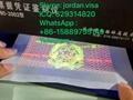 Italian Passport Overlay hologram