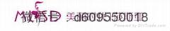 香港美丽时代贸易有限公司