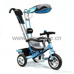 2013 New LEXX Trike