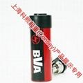 台湾BVA千斤顶 1