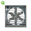 wall mounting exhaust fan for poultry house and livestock in Philippines  2