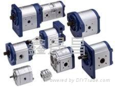 力士樂齒輪泵 1