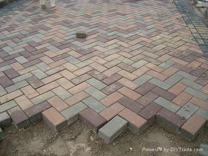 Hot selling paver block machine QTY2-20 4