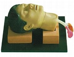 环甲膜穿刺和切开训练仿真模型