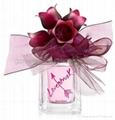 Designer Parfum and Fragrance