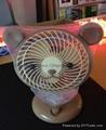 Animal Fan-Bear