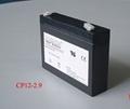 12V 2.9Ah battery