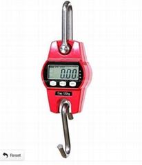 Mini Crane Scale 300kg