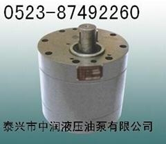 CB-B200油泵