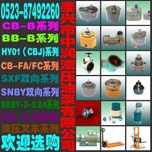 CB-B油泵 2