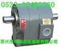 SXF-4.5齿轮泵 5