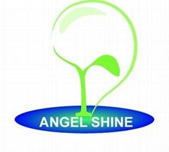 ShenZhen Angel Shine Technology Co.,Ltd